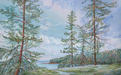 Bellhouse Beauties is an acrylic painting of Bellhouse Park on Galiano Island, Gulf Islands by artist Jeanne Erickson