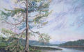 Sentinel Fir at Porlier Pass, Dionisio Point Provincial Park, Galiano Island, original acrylic painting of a Douglas fir tree, breezy sky, Gulf Islands, shoreline and sandstone in the Salish Sea by artist Jeanne Erickson.